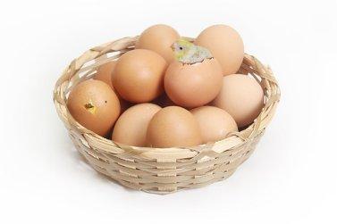 egg-1280733__340